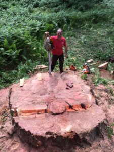 Large stump and Charlie
